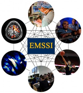 Exercise Medicine and Sport Sciences Initiative multidisciplinary approach (click on image to enlarge)
